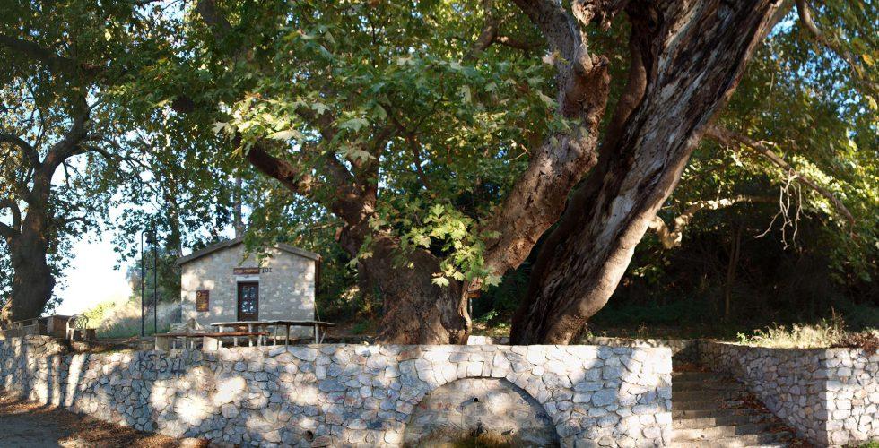 Agia Paraskevi, Loytra - Kassandra Halkidiki